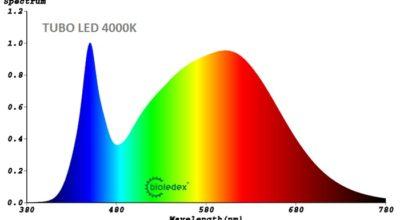 Equivalencia Lumen a Vatios tubos fluorescentes