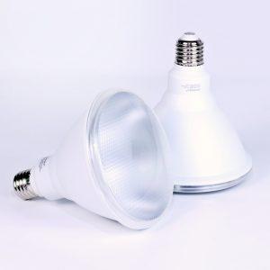 Bombilla LED PAR38 RODER 15W