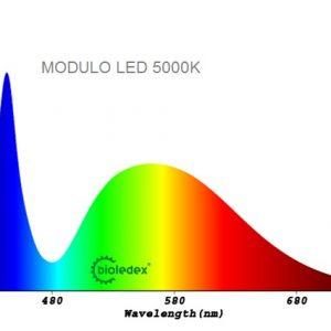 Modulos LED 12V pequeños | OSRAM-LED SMD