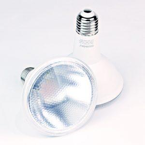 Reflector LED PAR30 RODER | 10W | SMD